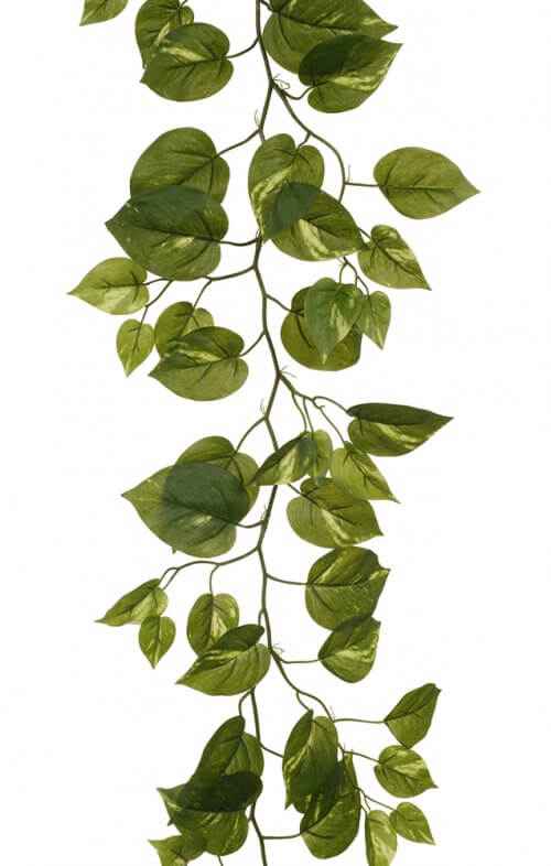 pothos garland green artificial