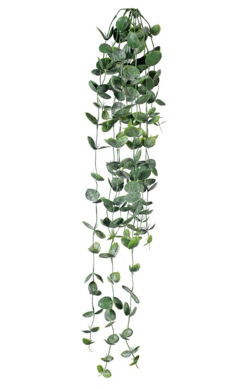 DISCHIDIA HANGING BUSH GREEN ARTIFICIAL