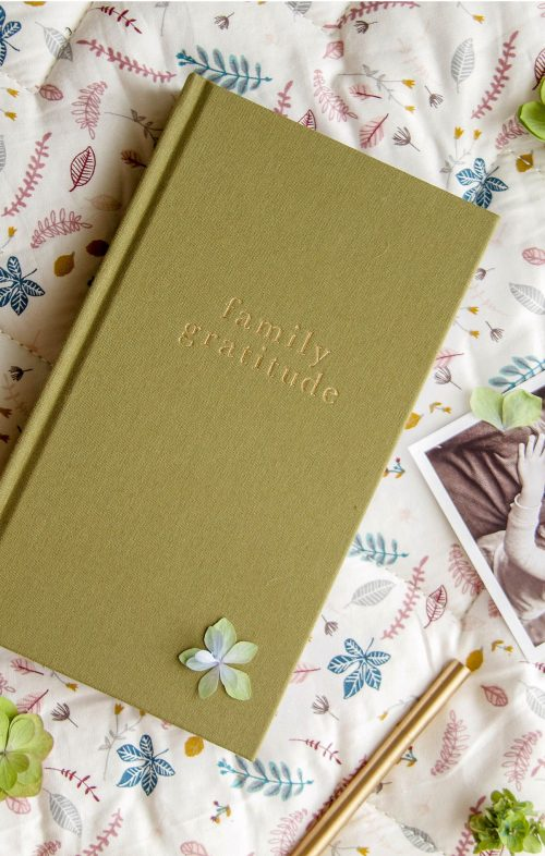WRITE TO ME FAMILY GRATITUDE JOURNAL GREEN